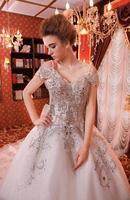 new princess wedding dress 2014 Korean Bra straps trailing wedding bride vestido de novia vestido de noiva a031