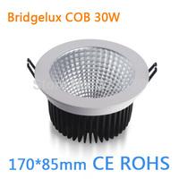 Factory Outlet 30W COB Bridgelux LED Downlight.170*85mm.Led Ceiling Light.85-260VAC.CE ROHS
