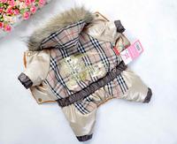 New FASHION BRAND  dog clothing cute pet clothes dress winter warm fordog cat