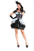 Sexy Maid Costumes Dress Sexy Halloween Costumes for Women Dress Women's Sexy Costumes PSY8207