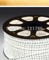 5M 60 LEDs/M 220 V 30 W 5050 Waterproof AC 220V LED Strip + Controller