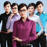 Free shipping  2014  New  Lapel  Women Work Wear  Women  Formal  Shirt