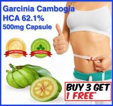 500mg*300caps GARCINIA CAMBOGIA HCA 62.1% ALL NATURAL PURE WEIGHT LOSS FAT BURN 2000mg Daily