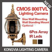 Promotion HD outdoor road lamp type cctv camera CMOS 800TVL hidden camera Lighting Camera