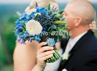 60pcs/lot Blue thistle seed and beautiful wedding flower seed balcony garden windowsill flower seeds