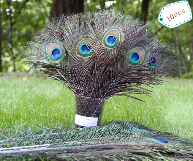 2015 HOT 10pcs natura peacock feather eyes screen bouquet green beautiful DIY home holiday decorations wedding party E752-D(China (Mainland))