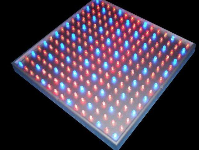 14W LED Grow light;225pcs(165pcs red:60pcs blue)5mm leds;AC85~264V input;(China (Mainland))