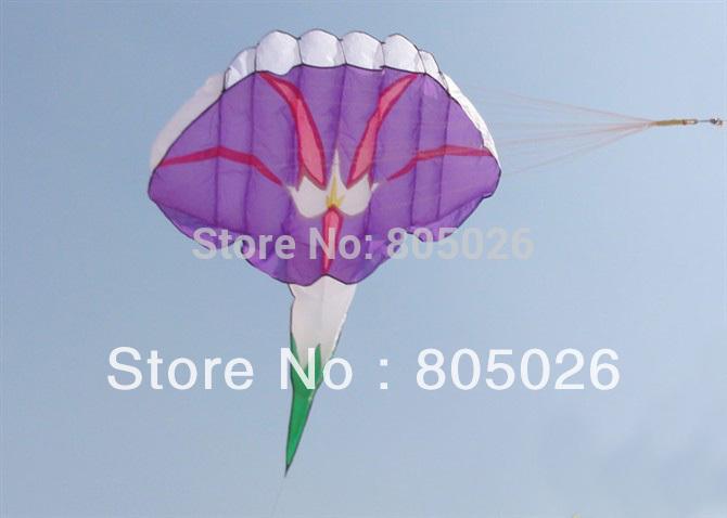 Kite Beautiful in Sky Hot