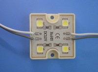 promotion! 5050 SMD LED module,DC12V input,waterproof,20pcs a string;single color(please specify in order)