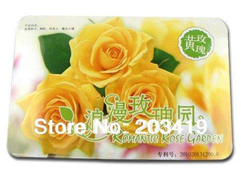 Creative Gift mini pet Plant Bonsai flowers rose roses potted Fantastic multi colors availabe wholesale(China (Mainland))