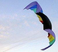 2.8sqm  Nasa kite +handle +4x25m 500lbs dyneema line