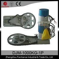 DJM-1000kg-3P (Heavy Motors)