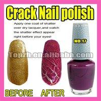 Wholesales Price Freeshipping 5pcs/LOT  New Nail Art Crack Nail Polish Varnish Purple F274