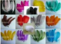mix colours goose feather 15-20cm free shipping wholesale