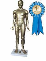 Human acupuncture model 85CM (bronze),acupuncturist