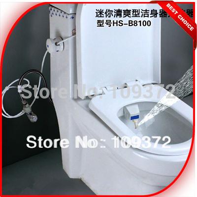 FREE SHIPPING 2015 HOT SELLING Simple Toilet Integrated Bidet(China (Mainland))