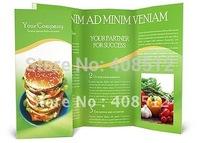 free shipping custom made design folded twice A4 brochure printing