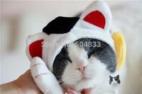 cute Cats hat fleece puppy kitty dog festival cap beauty