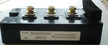 IPM  Module PM300DSA060