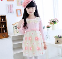 2015 new winter female models thick long-sleeved dress baby girls birthday party, fresh and elegant dress free shipping