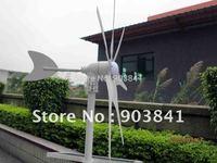 300w hyacinth wind generator,full power,windmill,wind turbine,high quality,CE,ROHS,ISO9001,12VDC,12VAC,24VDC,24VAC,free shipping
