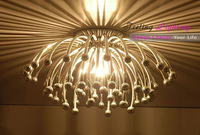 Free Shipping Hot Selling Chrysanthemum Ceiling,Wall,Table lamp Wall Fixture Pistillo ceiling light Large