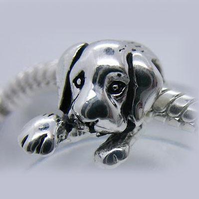 Pandora armband met charmes