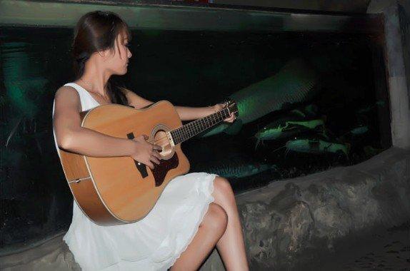 Catalpa Wood Guitars Folk Guitar Acoustic Catalpa