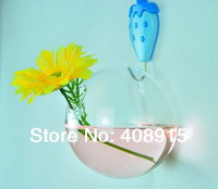 New! Global Clear Glass Wall Vase, 10x10x8cm with a 3cm hole, Home & Garden Decorative Flower Vases, 4pcs/ lot, free shipping