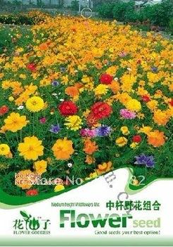 Free Shipping 3 Bags of  Medium height Wildflowers Mix Seeds, Medium height Wildflowers Mix seeds * 200 Seeds per Bag