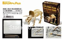 free shipping 2012 hot sale educational toys Archaeological dinosaur EFT4 Triceratops