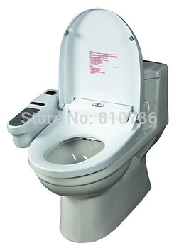 Intelligent toilet Seat Cover With Remote Controller ,Constant temperature toilet seat,Automatic deodorization
