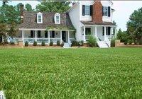 runway grass  artificial grass for football
