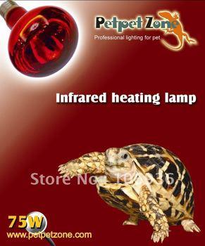 Reptile 75W R80 infrared li bulb/lamp - PetpetZone