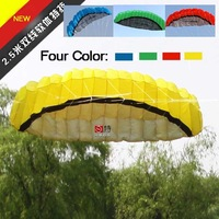 2012 new arrival  high quality 2.5 meters 2 line soft power kite, freeshipping