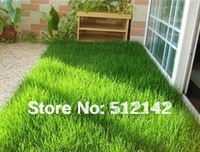 Flower Goddness grass seeds, 1 pack grass seeds about 300 pieces, suitable for home decor, children playing.