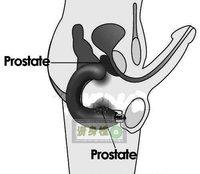 Hot sale! Male Prostate masturbation anal massager , G-spot vibration anal sex toys for men