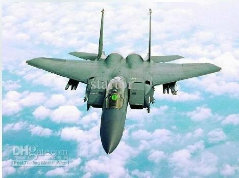Free shipping 2 pcs/lot Hottest TS827 F-15 F15 RC Airplane RTF Electric Power air plane RC Plane F15(China (Mainland))