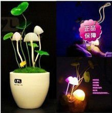 Free shipping Novelty Avatar Romantic Mushroom night light ,New listed creative charging  Desk Lamp