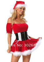 Womens Sexy Christmas Costumes Halloween Carnival Adult Size Free Shipping