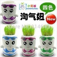 G12 Creative Gift hair man Plant mini bonsai plant pot white man grass doll series/radiation protection planted with pot
