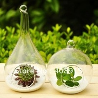 2012 New! Hanging Glass Air Plant Terrarium Global & Tapering Bud Glass Vase, Flat Bottom, garden ornament, free shipping 4pcs