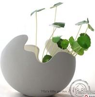 free shipping artificial Hydrocotyle vulgaris, silk plant  DIY home garden