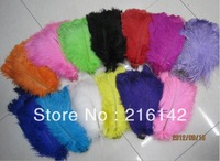 FREE SHIPPING Wholesale 100pcs/lot 12-14inch white black Burgundy Gold Ivory Pink Blue Orange GREEEN purple Ostrich Feather