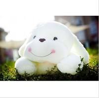 65cm dog doll plush toy Large pillow cloth doll dog smiley dog birthday gift
