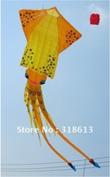 Free Shipping 2012 New design 6*3m cartoon fish kite