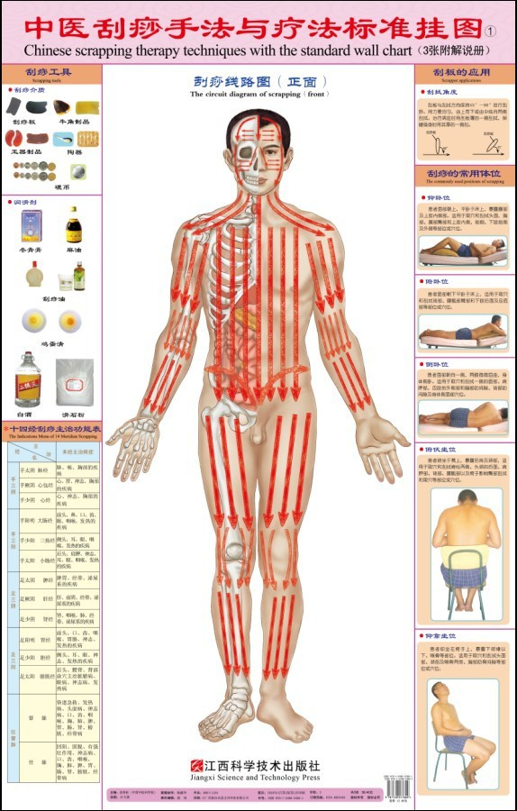 The scraping techniques and therapies Standard wall charts(China (Mainland))