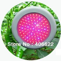 50W Red&Blue Round LED Grow Light for Plant/Vegetable