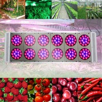 2014 Newest upgrading Apollo P12 series  540w non-dimmer  grow lights  for hydroponics plants flowering ,Dropshp
