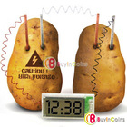 Potato Clock Novel Green Science Project Experiment Kit kids Lab Home School Toy #21533(China (Mainland))